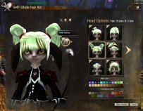 GW2_Self Style Hair Kit